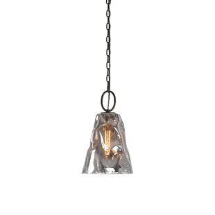 World Menagerie Holyoke Smoked Glass 1 -Light LED Bell Pendant