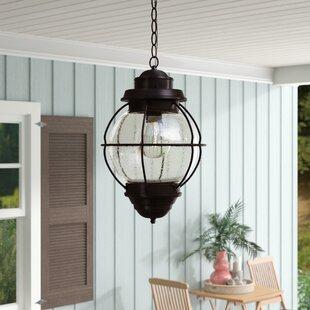 Beachcrest Home Ervin 1-Light Outdoor Hanging Lantern