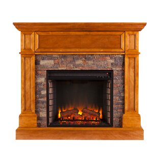 Bluff Canyon Convertible Electric Fireplace by Alcott Hill