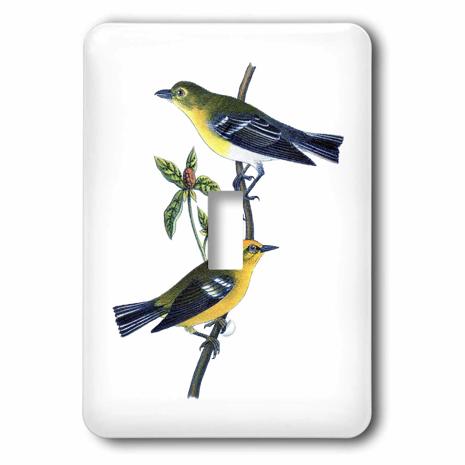 3drose Birds On Branch 1 Gang Toggle Light Switch Wall Plate Wayfair