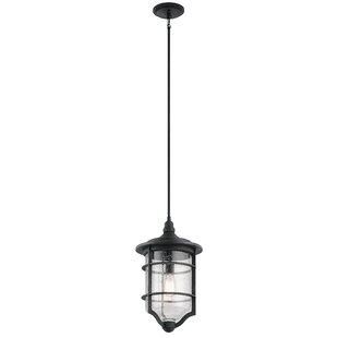 Beachcrest Home St Croix 1-Light Outdoor Hanging Lantern