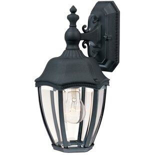 Bloomsbury Market Teri Traditional 1-Light Outdoor Wall Lantern