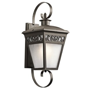 One Allium Way Viverette 1-Light Outdoor Wall Lantern