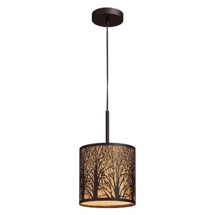 Loon Peak Coso 1-Light Pendant