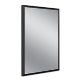 Raeford Modern & Comtemporary Accent Mirror