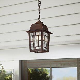 Payeur 1-Light Outdoor Hanging Lantern