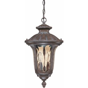Zion 2-Light Outdoor Hanging Lantern