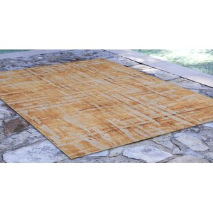 Richter Gold Indoor/Outdoor Area Rug