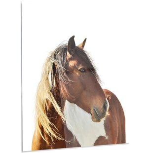 Large Brown Horse Illustration Photographic Print On Metal