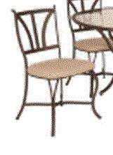 Santa Barbara Patio Dining Chair With Cushion by Kalco Savings