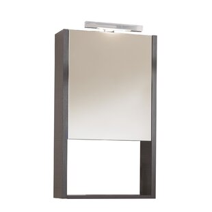 Bugg 52cm X 75cm Surface Mount Mirror Cabinet By Brayden Studio