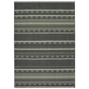 Hedden Black/Beige Indoor/Outdoor Area Rug