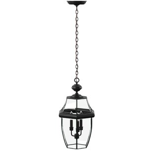 Brawner Large 3-Light Outdoor Hanging Lantern