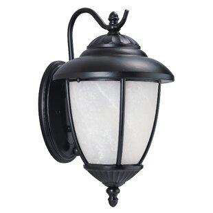 Atisha 1-Light Outdoor Wall Lantern by Red Barrel Studio