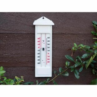 Naugle Thermometer By Symple Stuff