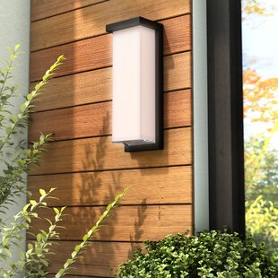 Latitude Run Henegar 1-Light Outdoor Flush Mount