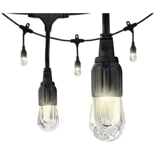Best Reviews Globe String Lights By Enlighten ® by Jasco