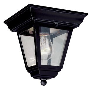 Shop For Outdoor 1-Light Flush Mount By TransGlobe Lighting