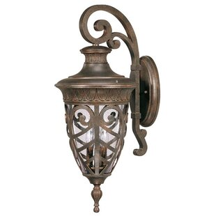 Looking for Dunamoy 3-Light Outdoor Wall Lantern By Astoria Grand