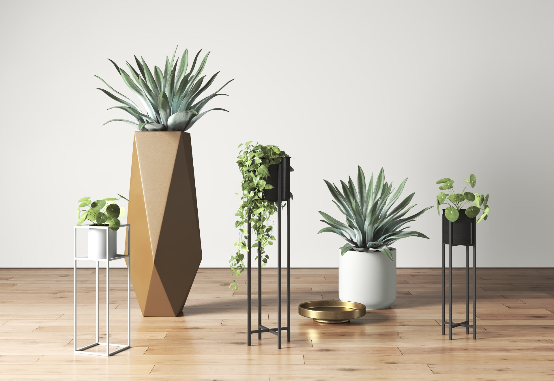 Our Favorite Plant Room Ideas Allmodern