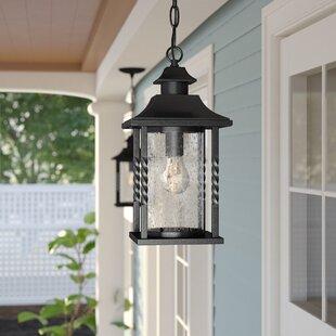 Birch Lane™ Heritage Barrow 1- Light Outdoor Hanging Lantern