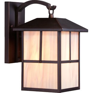 Raci 1-Light Outdoor Wall Lantern