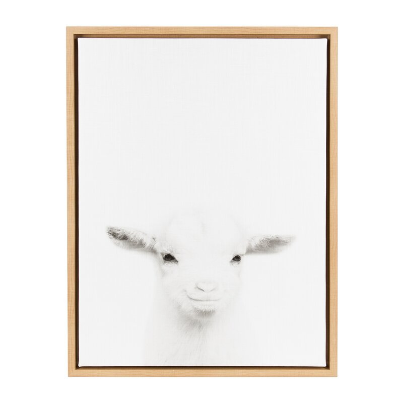 'Sylvie Baby Goat Black and White Portrait' Framed Photographic Print on Canvas