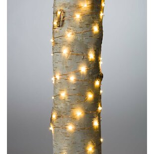 Plow & Hearth Firefly 60 Light Fairy String Light (Set of 6)