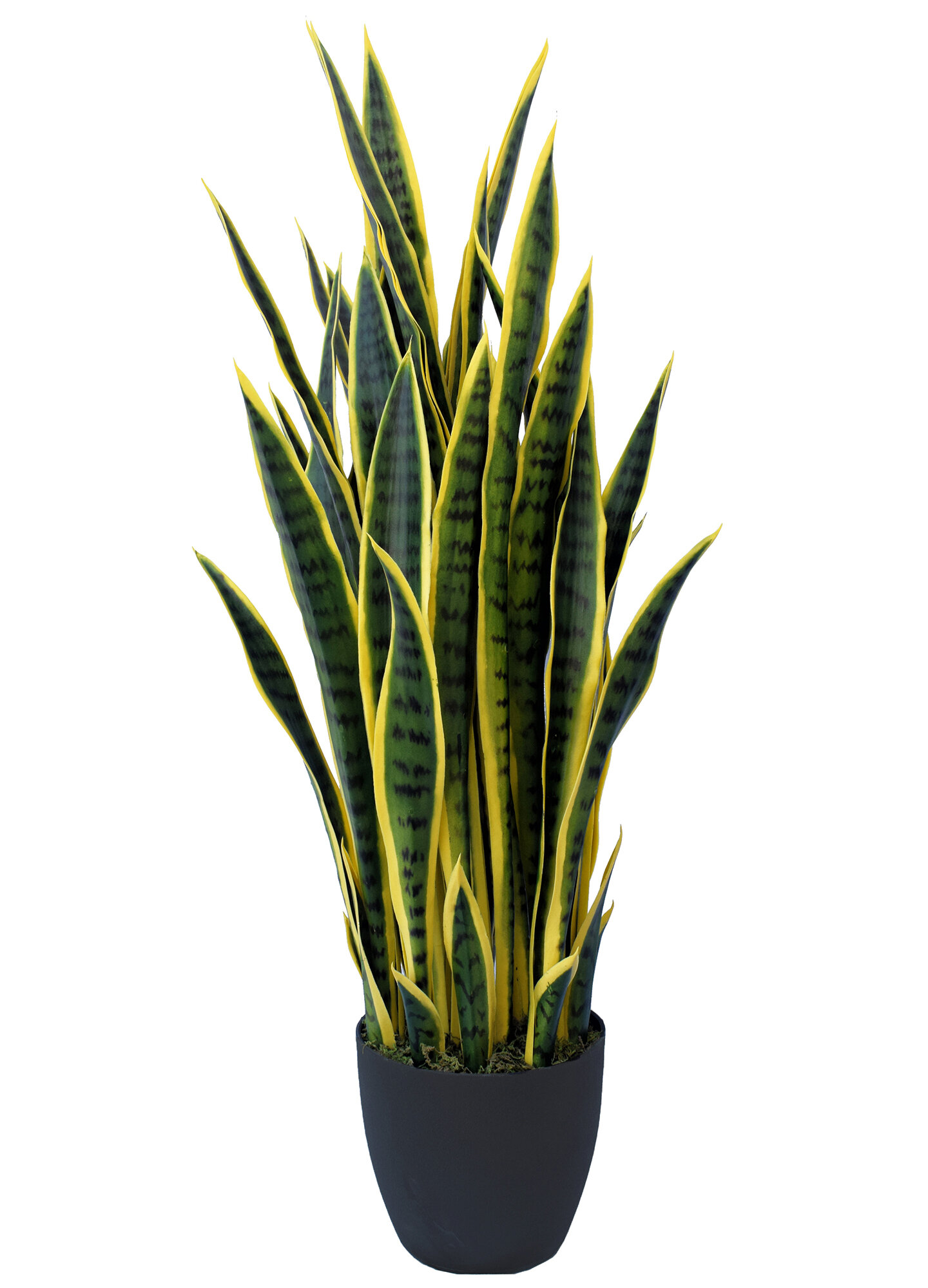 Orren Ellis Sansevieria Artificial Snake Plant Succulent In Pot Reviews Wayfair