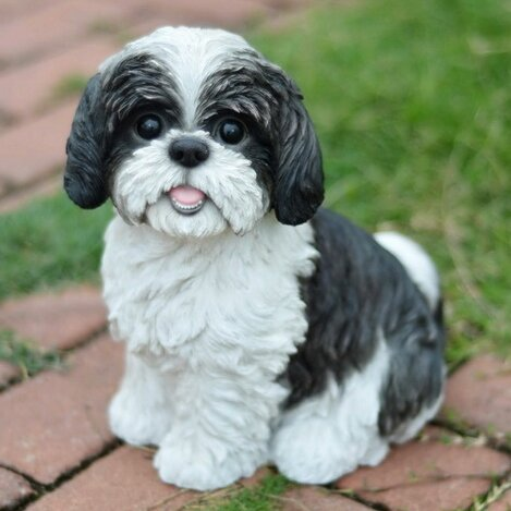 Charmant Shih Tzu Statue | Wayfair