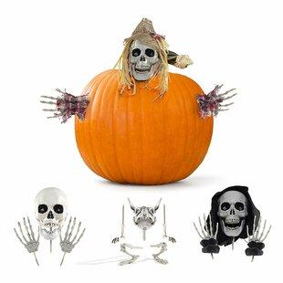Pumpkin Decor Wayfair