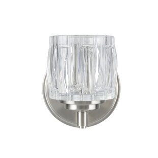 Hanne Metal 1-Light Bath Sconce by Darby Home Co