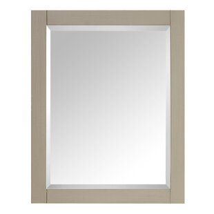Affordable Price 14000 Series Bathroom/Vanity Mirror By Avanity