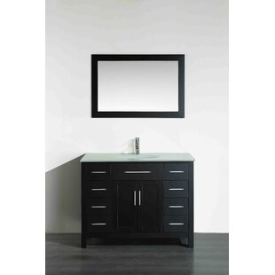 Hampton 43 Single Bathroom Vanity Set with Mirror by Bosconi