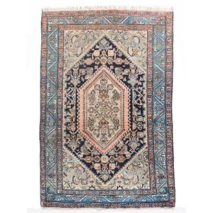 Gotloh Hand Knotted Wool Beige/Blue Rug by Parwis