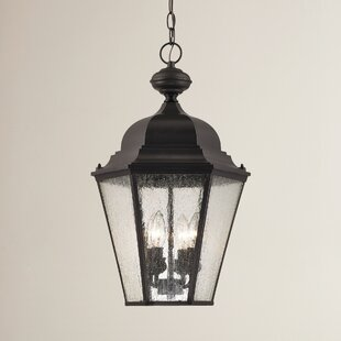 Buy clear Drennen 4-Light Outdoor Hanging Lantern By Darby Home Co