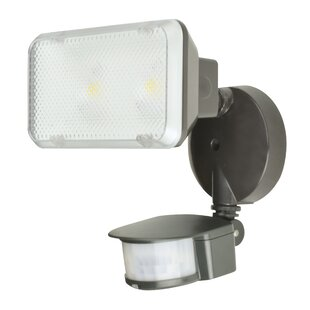 AFX 1-Light Flood Light