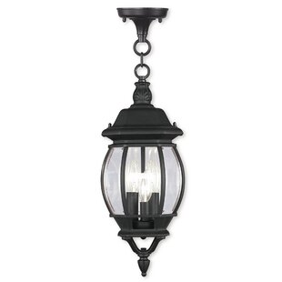 Reviews Kelly 3-Light Outdoor Hanging Lantern By Darby Home Co