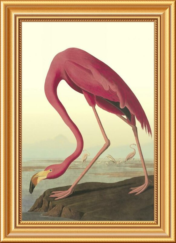 'American Flamingo' by John James Audubon Framed Wall Art - Shop Drew's Honeymoon House {Guest Bedrooms} #pinkflamingo #audubon