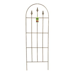 World Source Partners Gothic Metal Arched Trellis