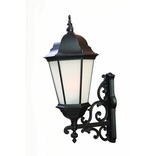 Bellver Traditional 1-Light Glass Shade Outdoor Sconce by Astoria Grand