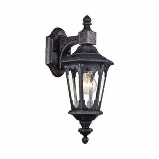 Coffield 1 Light Outdoor Wall Lantern Image