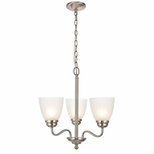 Affordable Hampton 3-Light Shaded Chandelier By Charlton Home