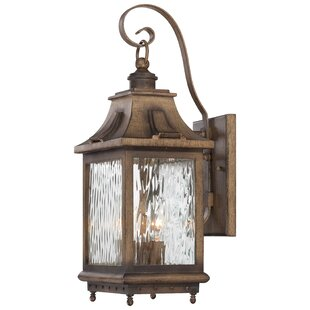 Darby Home Co Danville 3-Light Outdoor Wall Lantern