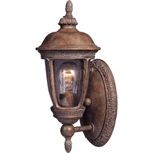 Diahann 1-Light Outdoor Sconce