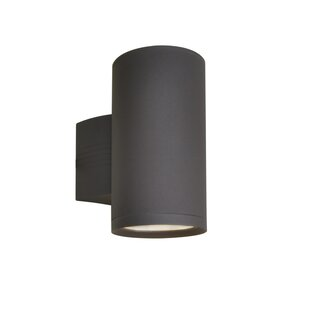 Best Choices Leilla 1-Light Outdoor Sconce By Orren Ellis
