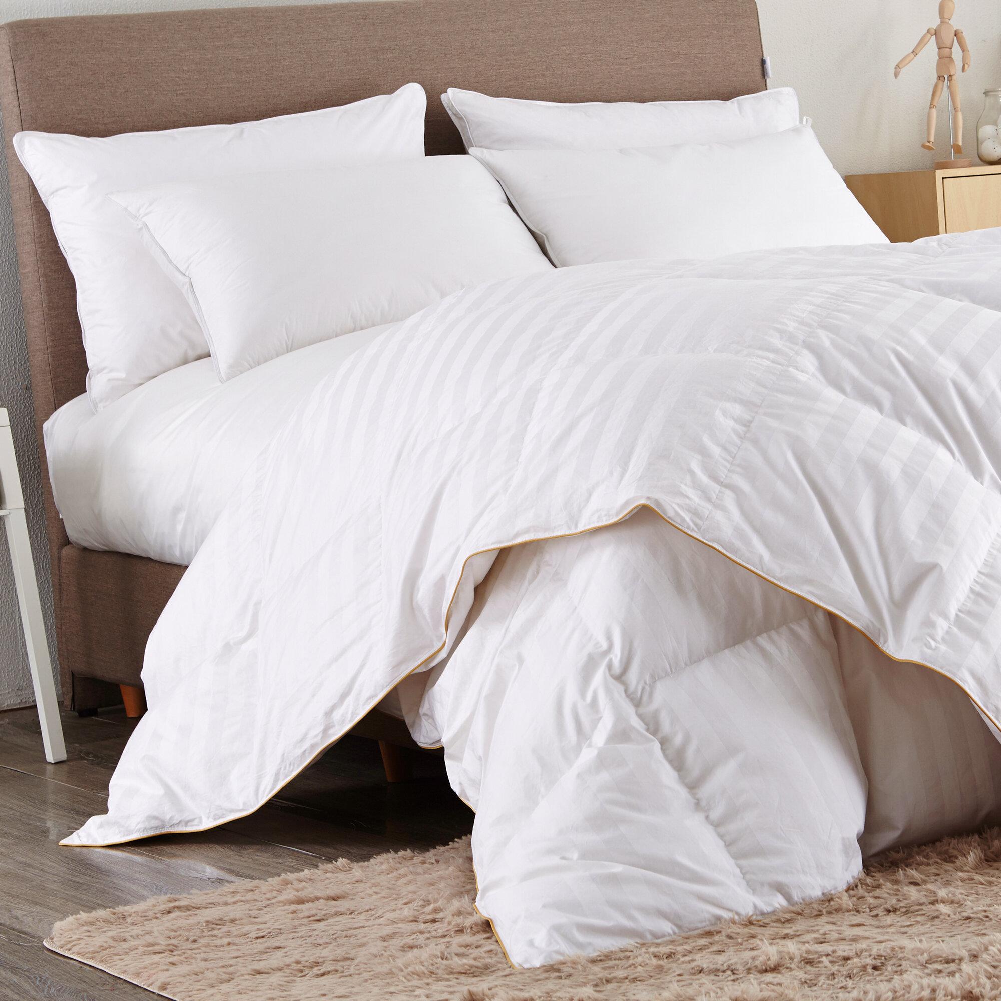 500 All Season Goose Down Comforter Reviews Allmodern