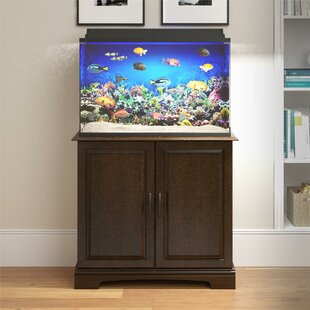 Fish Tanks & Aquariums You'll in 2019 | Wayfair on home conservatory designs, home walkway designs, home entryway designs, home reception designs, home loft designs, home great room designs, home front designs, home staircase designs, home stairway designs, home beach designs, home wall designs, home garden designs, home dining room designs, home mud room designs, home glass designs, home floor designs, home school designs, home study designs, home building designs, home foyer designs,