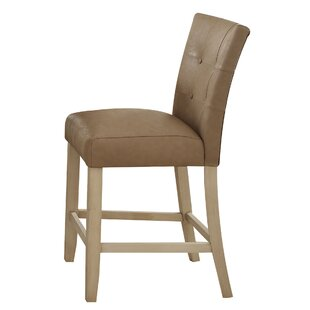 Neponset Dining Chair (Set of 2) Red Barrel Studio