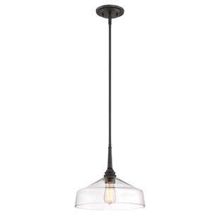 Williston Forge Coldiron 1-Light Dome Pendant